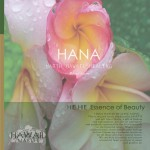 ハワイの癒しのCDを取り扱い開始いたしました!
