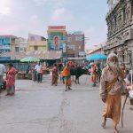 南インド巡礼の旅2019 レポート③