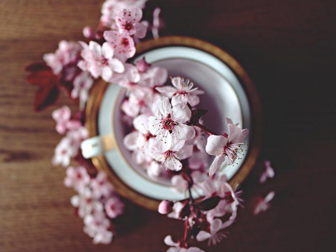 spring-2174750_960_720